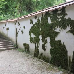 Moss grafitti.jpg