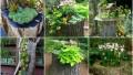 Befunky collage 55.jpg