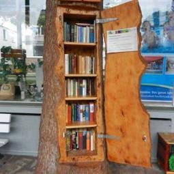 Book libraries or shelves.jpg