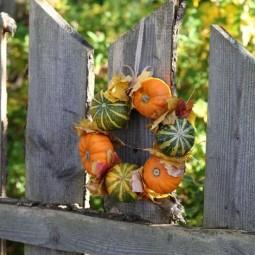 Dea38acecd260c7f9098b15f2ac4bc57 autumn home autumn garden.jpg