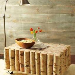 Diy birch tree log coffee table 1.jpg