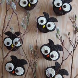 Gallery 1438794354 owl cupcakes 006.jpg
