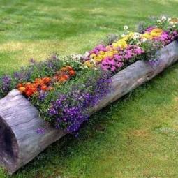 Garden log.jpg