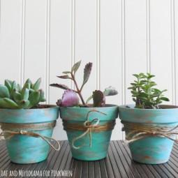 Rustic succulent pots.jpg