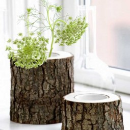 Vase of log.jpg