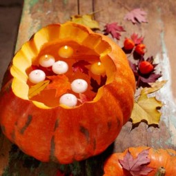 101653578_pumpkin.jpg