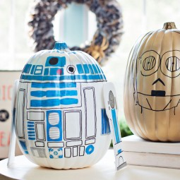 Star wars pumpkins craft 8.jpg