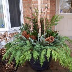 1 outdoor christmas decoration.jpg