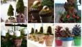 Collage 40.jpg