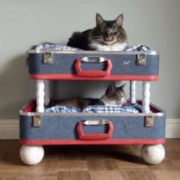 Ba20fe046f778666839e67c2c560248b old suitcases craft ideas.jpg