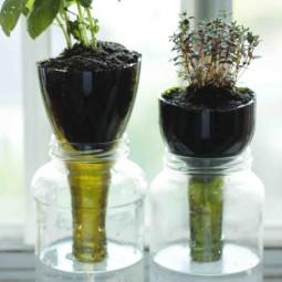 1438717995 glass planter.jpg