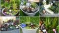 Befunky collage 42.jpg