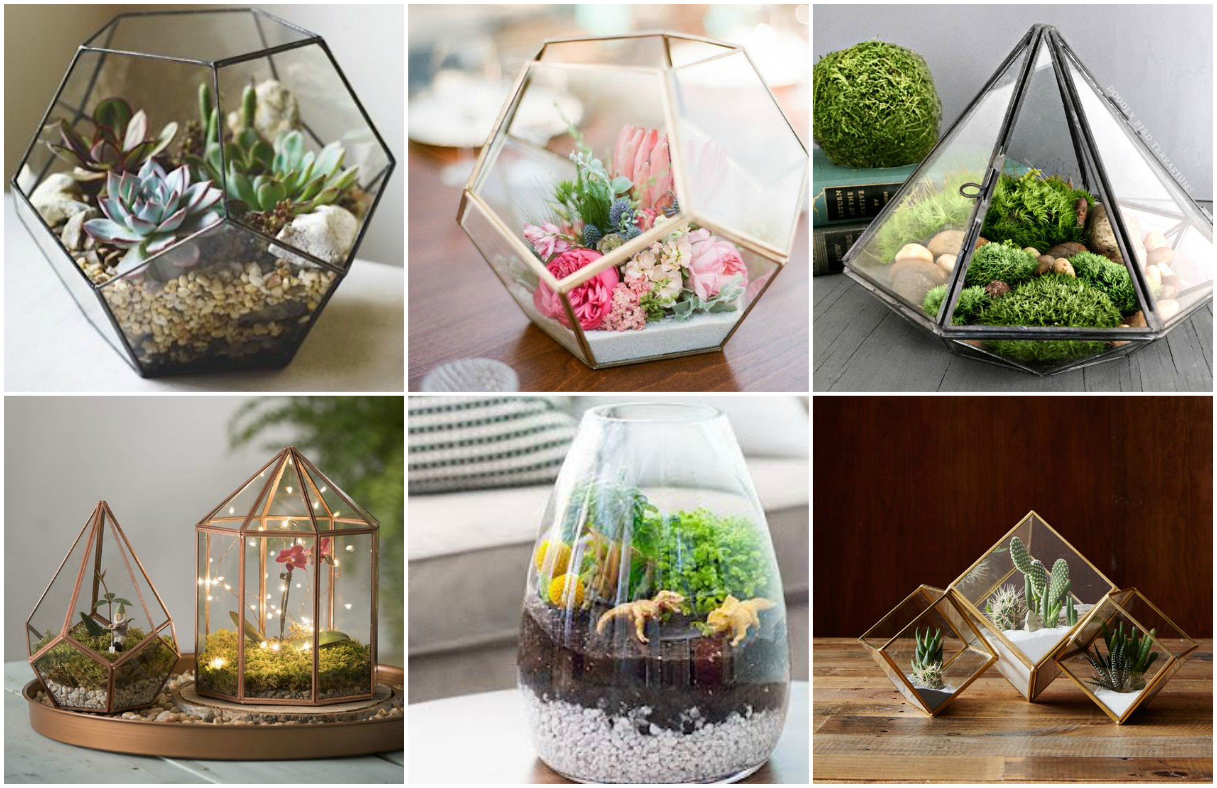 zauberhafte welt im glas diy terrarium machen. Black Bedroom Furniture Sets. Home Design Ideas