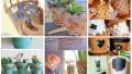 Collage 39.jpg