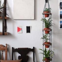 Creative hanging plants.jpg