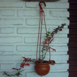 Hanging plant art.jpg
