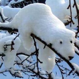 Winter decorating backyard ideas snow sculptures 11.jpg