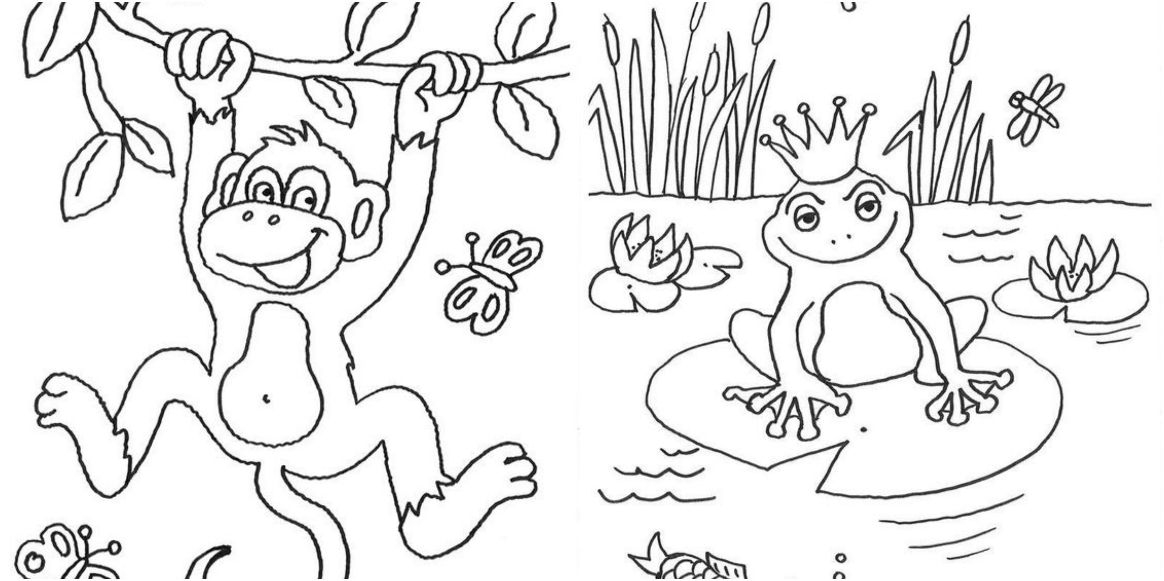 ausmalbilder tiere 10 malvorlagen zum ausdrucken