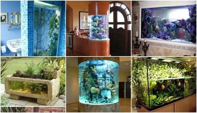 Die schönsten Aquarien für Zuhause :) - nettetipps.de