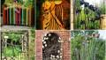 Befunky collage 141.jpg