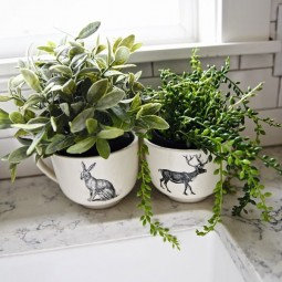 07 farmhouse plant decor ideas homebnc.jpg
