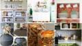Befunky collage 16.jpg