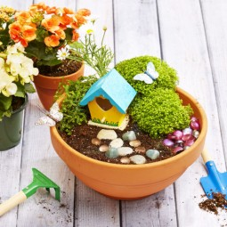 Gallery 1498079259 fairy garden diy.jpg