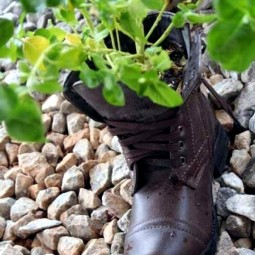 Plantar old shoes again ideas for home garden planters 24 556.jpeg