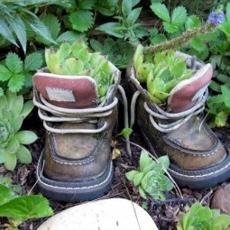 Plantar old shoes again ideas for home garden planters 26 556.jpeg