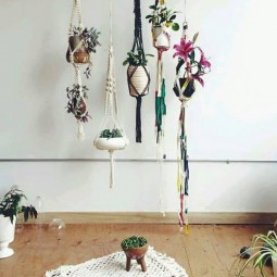 Room decor with hanging plants.jpg