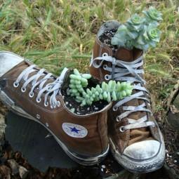 Shoe planter.jpg