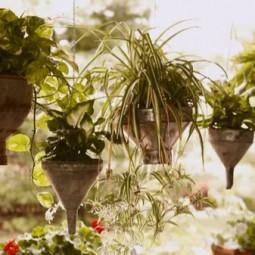 Stunning hanging baskets.jpg