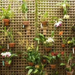 Wall decor with hanging plants.jpg