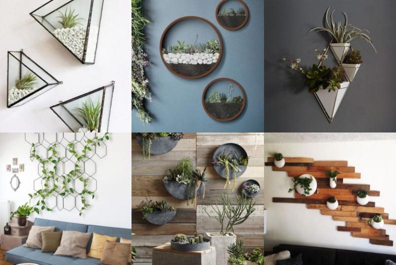 Vertikal An Der Wand Pflanzen