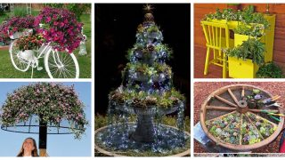 http://www.dun4me.com/, https://www.brit.co/diy-creative-planters/, i.pinimg.com, pinterest.com,