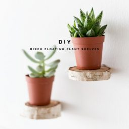 Make floating plant shelves from a birch wood roun 280489883026808563.jpg