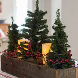 Stunning christmas decor ideas with farmhouse style for living room 42.jpg