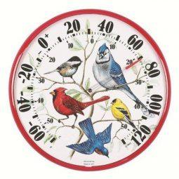 Cheerybird.com_.jpg