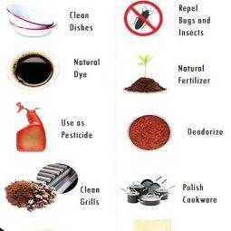 Usefulcoffeetips.com_.jpg