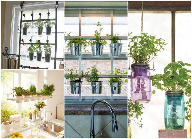 Pflanzen Dekoideen: mini-Garten am Fenster :) - nettetipps.de