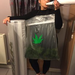 Funny weed bag fancy dress costume.jpg
