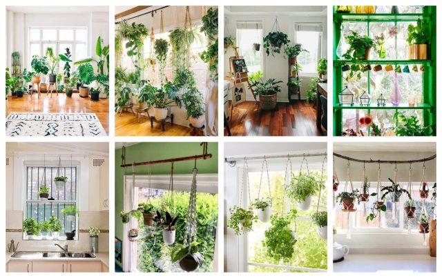 Befunky collage 34.jpg
