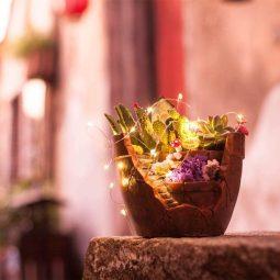 Minigarten, Mini Garten, DIY Minigarten, Minigarten im Blumentopf, Minigarten im Tontopf, wunderschöne Gartendeko