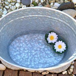 Zinkeimer oder Zinkwanne können als eine nette Alternative zu langweiligen Blumentöpfen verwendet werden.
