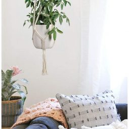 Hängende Blumentöpfe für jede Wohnung