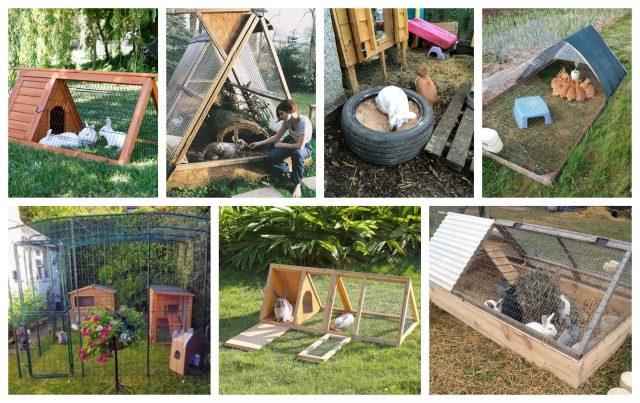 Befunky collage11.jpg
