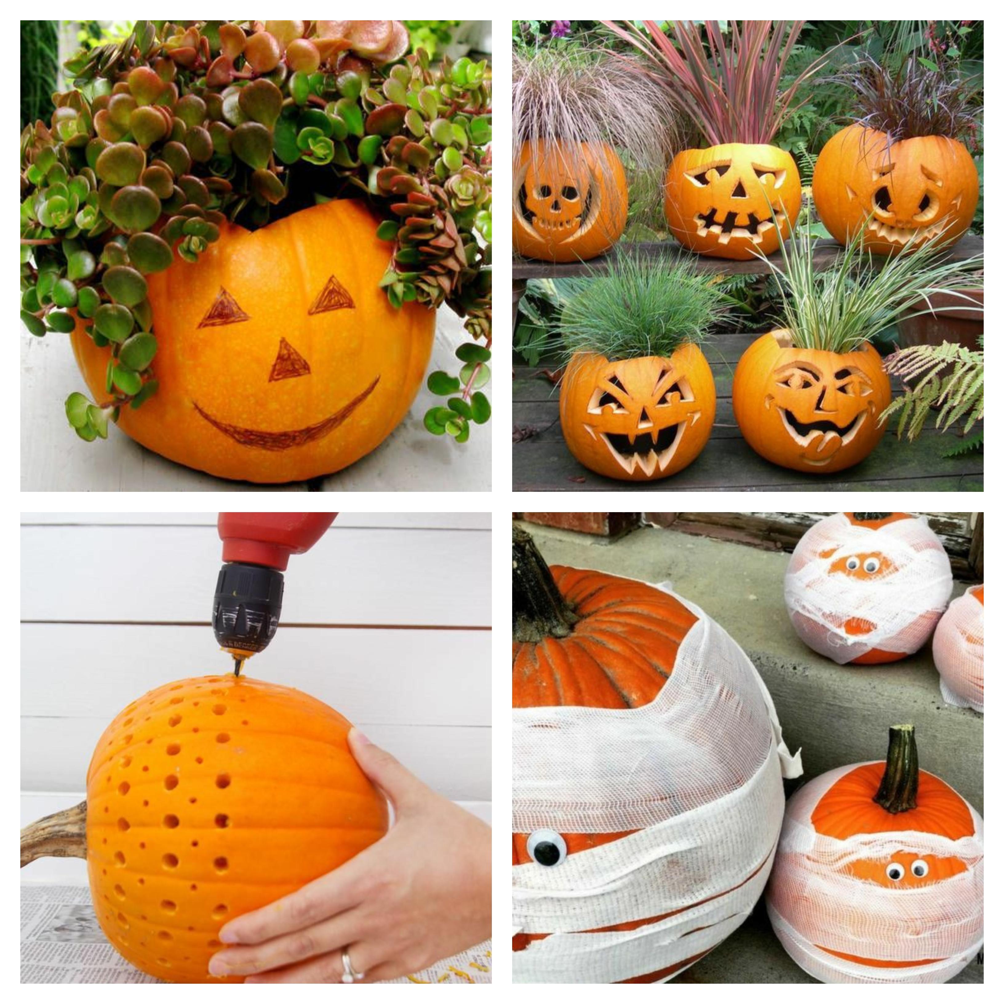 15 wunderschöne kürbis ideen für halloween deko