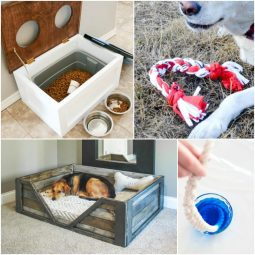 Diy projects for dogs 768x768.jpg