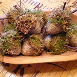 Athomeinenglishvalley.blogspot.com_.jpg