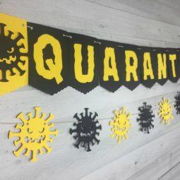 Quarantine birthday banner.jpg